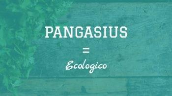 Pangasius è ecologico
